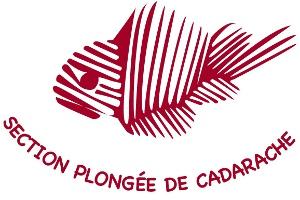 ASCEA Cadarache section Plongée
